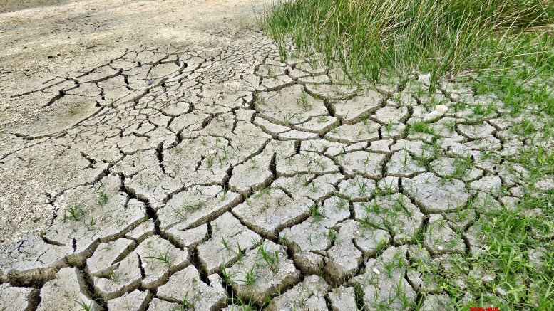 With less than 45% rain, drought looms over Bihar