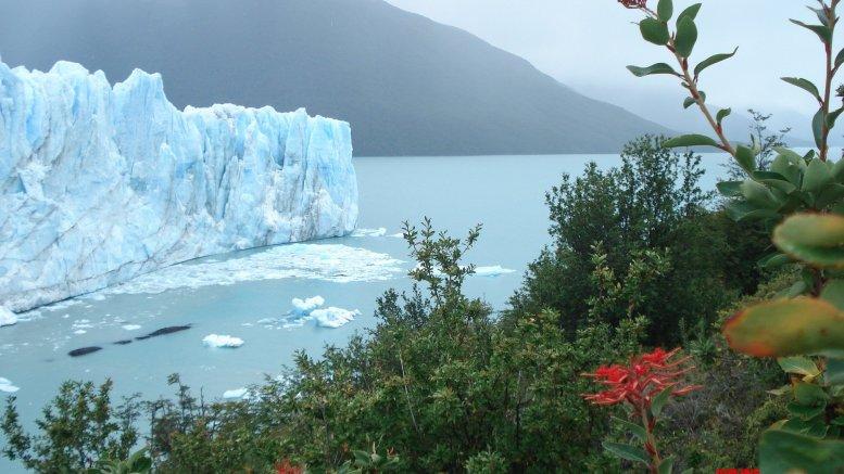 'Global healthcare sector major contributor to climate crisis'