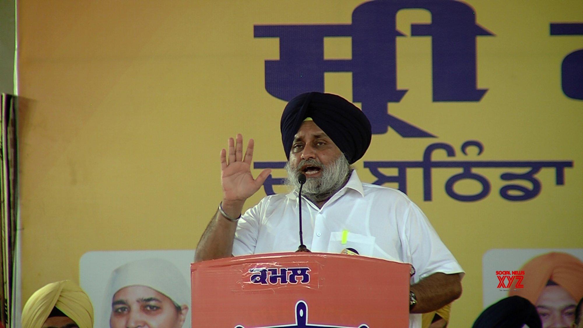 Amarinder govt conspiring to weaken Sikh institutions: SAD