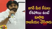 Pawan Kalyan Controversial Comments On AP CM YS Jagan Over His Politics (Video)