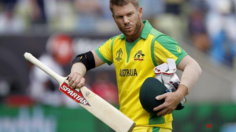 Warner slams ton in domestic cricket to reverse slump in form