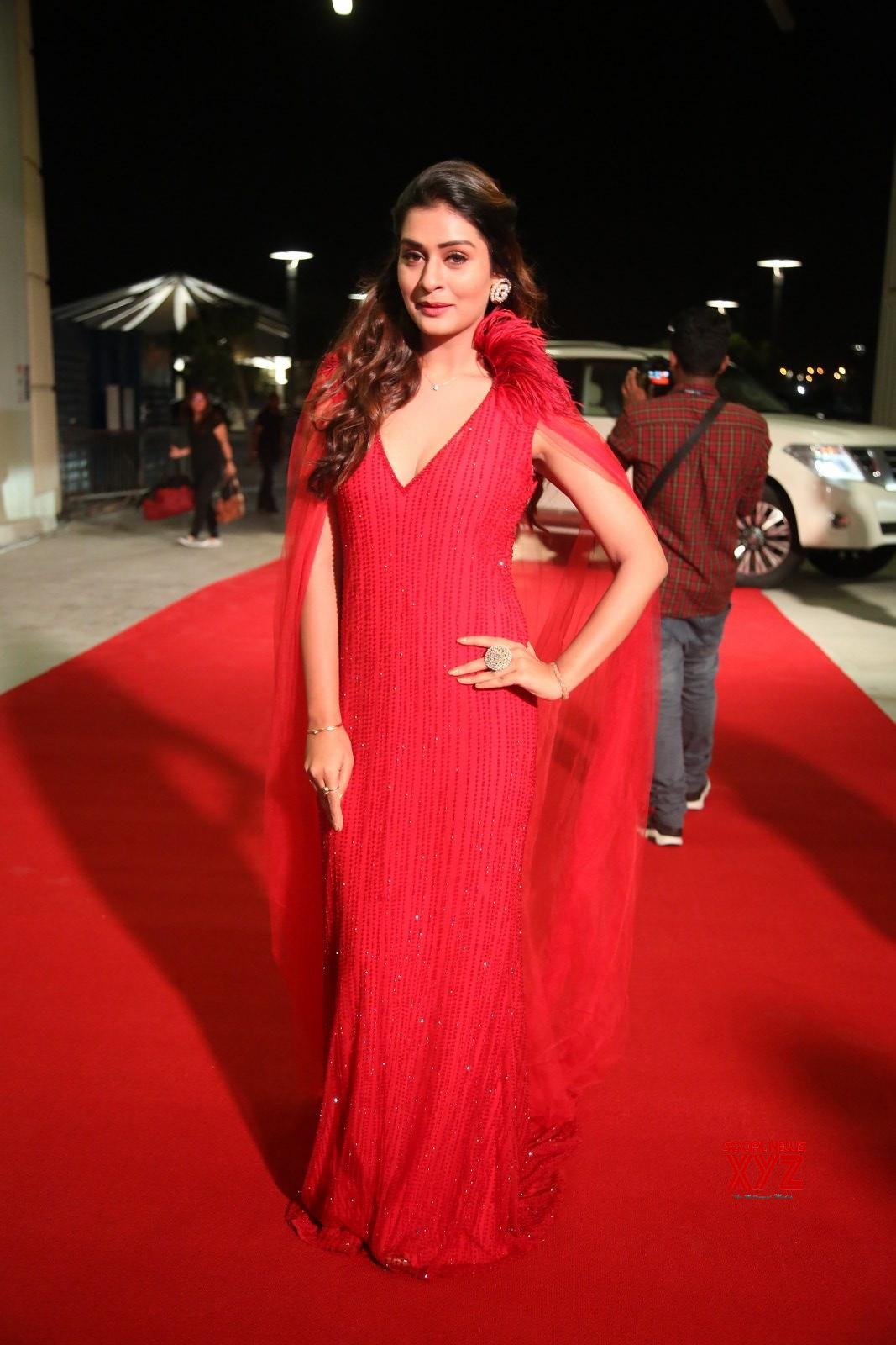 Actress Payal Rajput Stills From SIIMA Awards 2019 Red Carpet