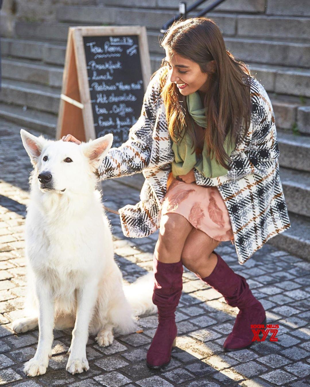Actress Pooja Hegde Latest Hot Stills From Paris
