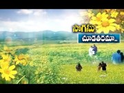Araku Valley | Tourists attracts with Mesmerizing Gardens  (Video)