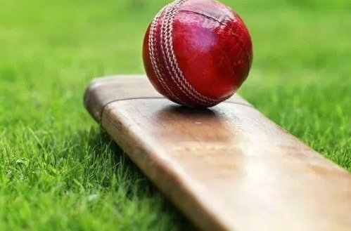 COVID-19: National leg cricket league indefinitely postponed
