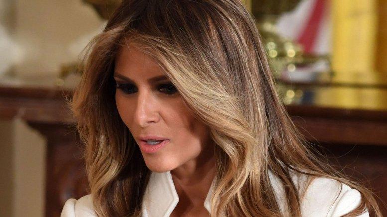 Melania's Christmas tweet wows fans, angers critics