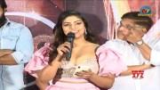 Mamangam Movie Telugu Trailer Launch (Video)