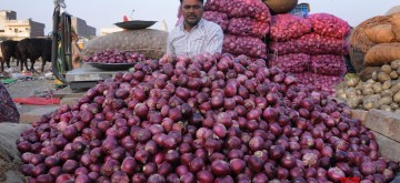 Amritsar: A vendor arranges onions at a wholesale market in Amritsar, on Dec 4, 2019. Onion prices across the country continue to soar. (Photo: IANS)