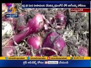 Onion Crop Worth Rs.30,000 Stolen | from Farmer's Field | in MP | Ahead of Onion Prices Hike  (Video)