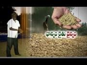 Krishna & Godavari Farmers Worried for Crop Purchases | Etv Ground Report  (Video)