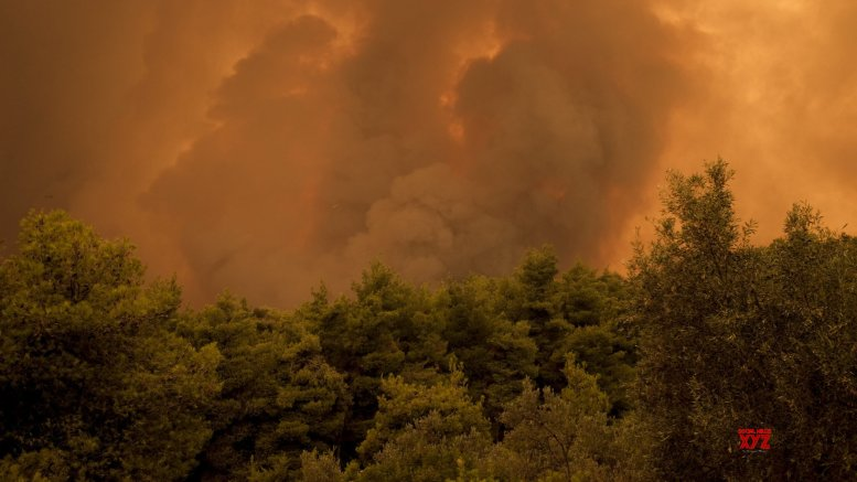 Climate change increases risk of wildfires: Study