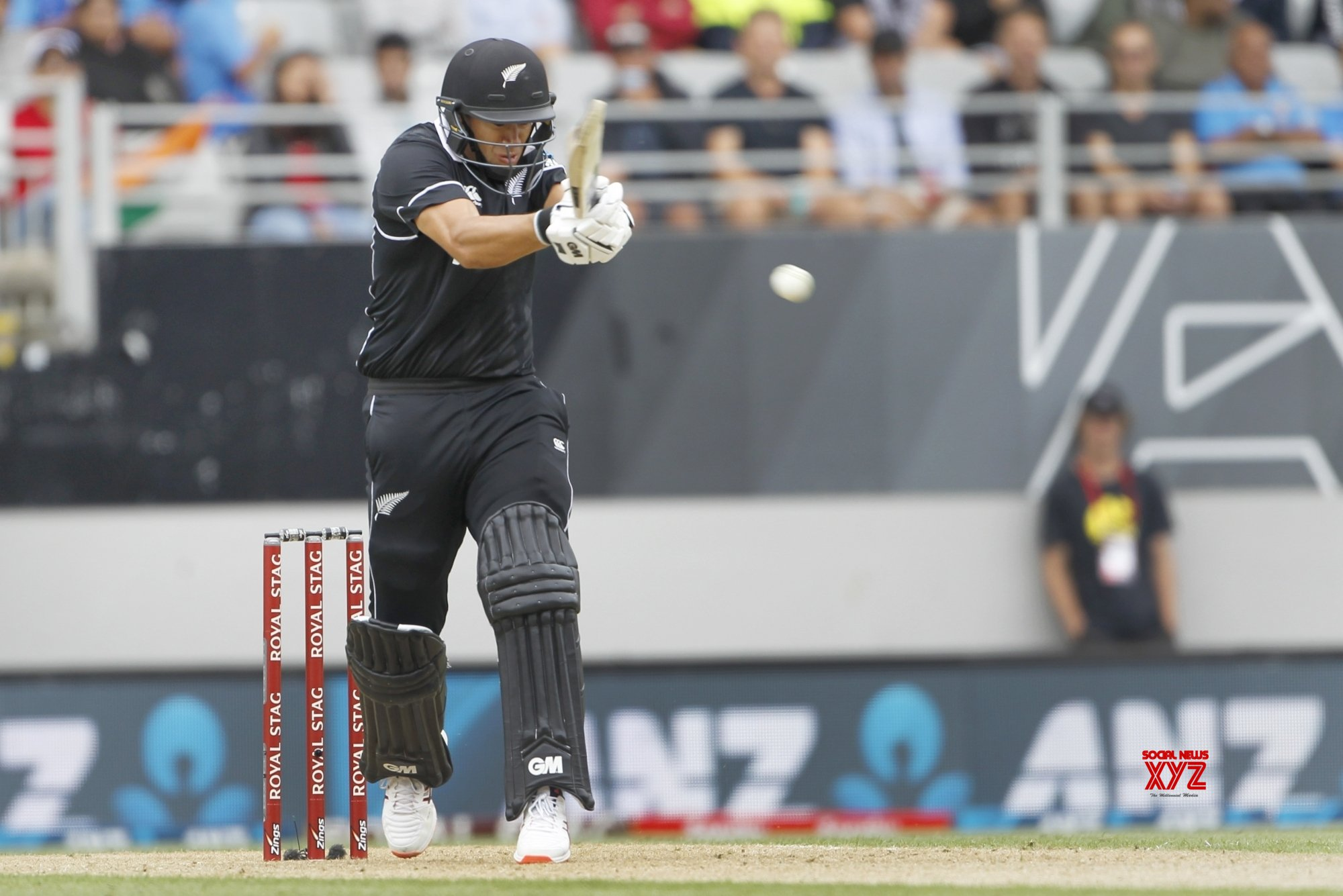 Auckland: 2nd ODI - India Vs New Zealand (Batch - 11) #Gallery
