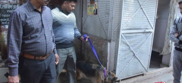 Lucknow: Dog squad inspects the blast site after a bomb explosion take place at a Lucknow Collectorate near the District Magistrate's office, leaving one persons seriously injured while two others suffered minor injuries in Lucknow on Feb 13, 2020. (Photo: IANS)