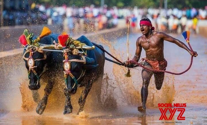 K'taka man's 100m dash in water-filled field wows Twitterati