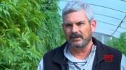 South Carolina hemp farmers face new regulations (Video)