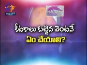 What To Do When Insects Stings ? | Sukhibhava | 15th February 2020 |  ETV Andhra Pradesh  (Video)
