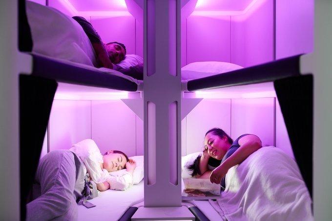 Air New Zealand unveils flying bunk beds, Tweeple impressed