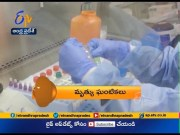 8 PM | Ghantaravam | News Headlines | 26th March 2020 | ETV   Andhra Pradesh  (Video)
