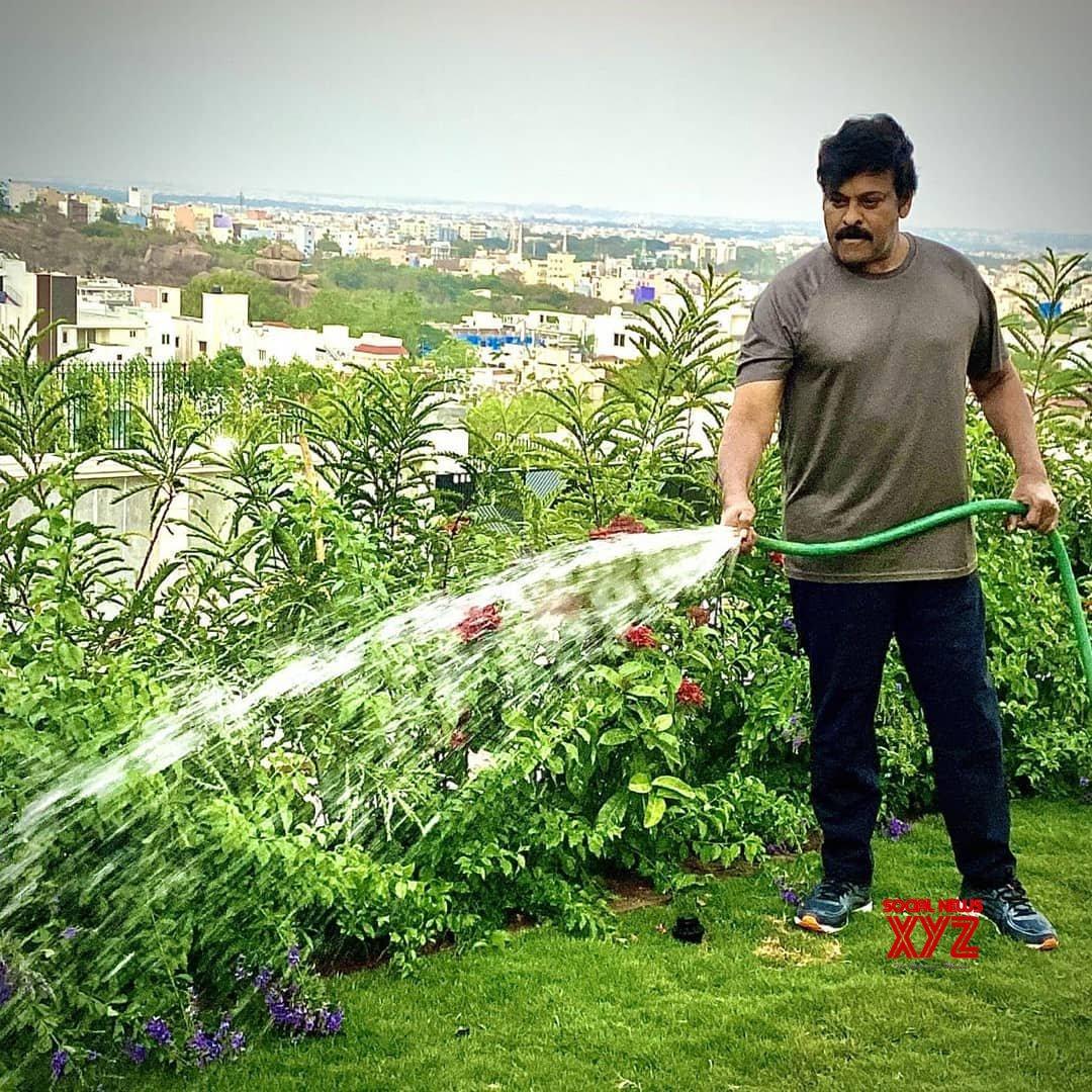 Megastar Chiranjeevi Latest Still Watering Plants