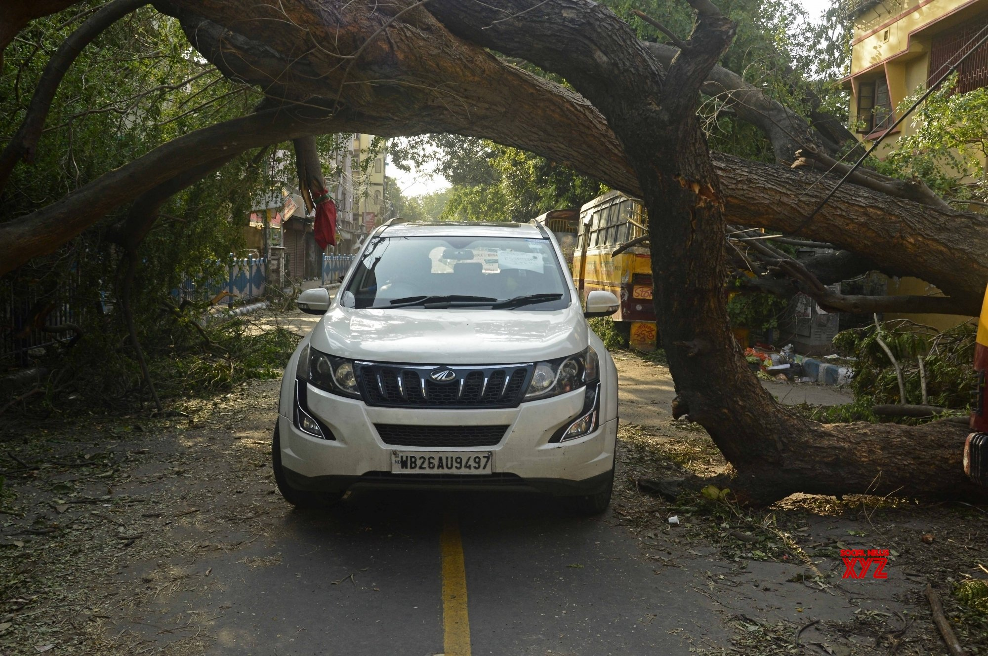 Kolkata: Cyclone Amphan: Uprooted trees block Kolkata streets #Gallery