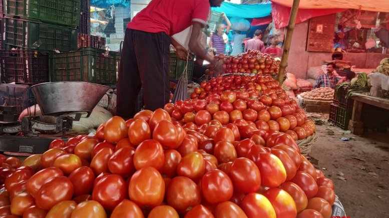 Tomatoes selling below Re 1 per kg in Delhi wholesale markets