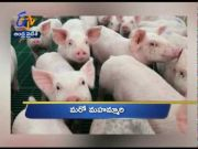 7 PM   Ghantaravam   News Headlines   30th June 2020   ETV Andhra Pradesh  (Video)