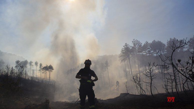 Bolivia declares national emergency over forest fires