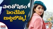 ABN:  Pooja Hikes Remuneration (Video)