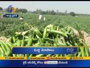 10 AM    Ghantaravam   News Headlines   21st November 2020   ETV Andhra Pradesh  (Video)