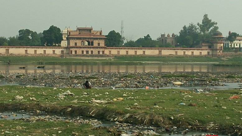 Activists remove tons of garbage, immersed idols from Yamuna