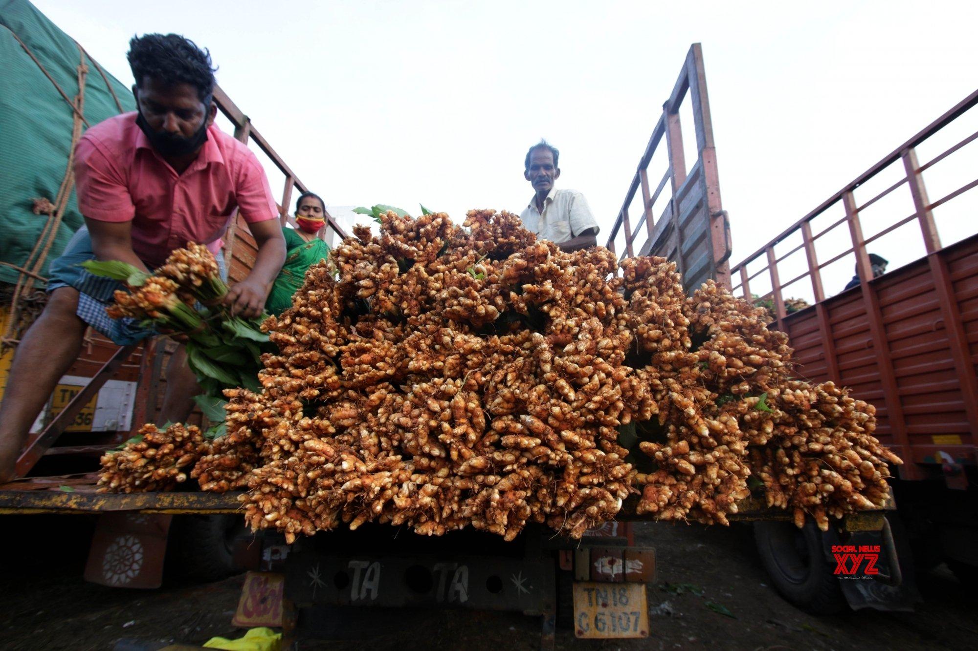 Chennai: Chennai wholesale market Koyambedu #Gallery