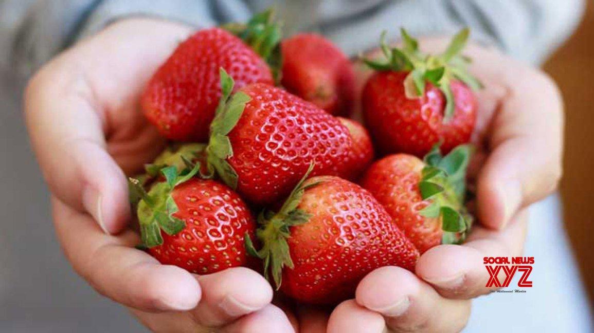 Israel's peak strawberry season offers new tastes