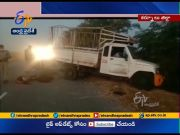 40 Sheeps Dead in Road Accident   at Adoni in Kurnool Dist  (Video)