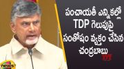 Chandrababu Naidu Expresses Happiness Over TDP Victory In AP Local Body Elections (Video)