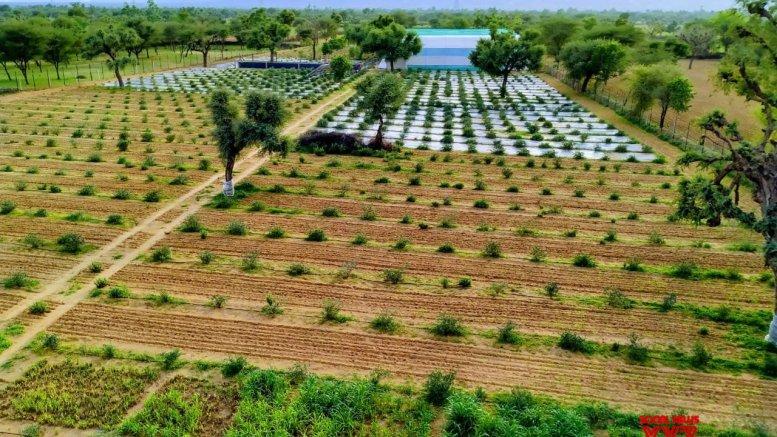 Raj land turning into green zone despite no water, power