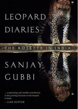 'Leopard Diaries' explores remarkable tale of 'lonely, mysterious creature'