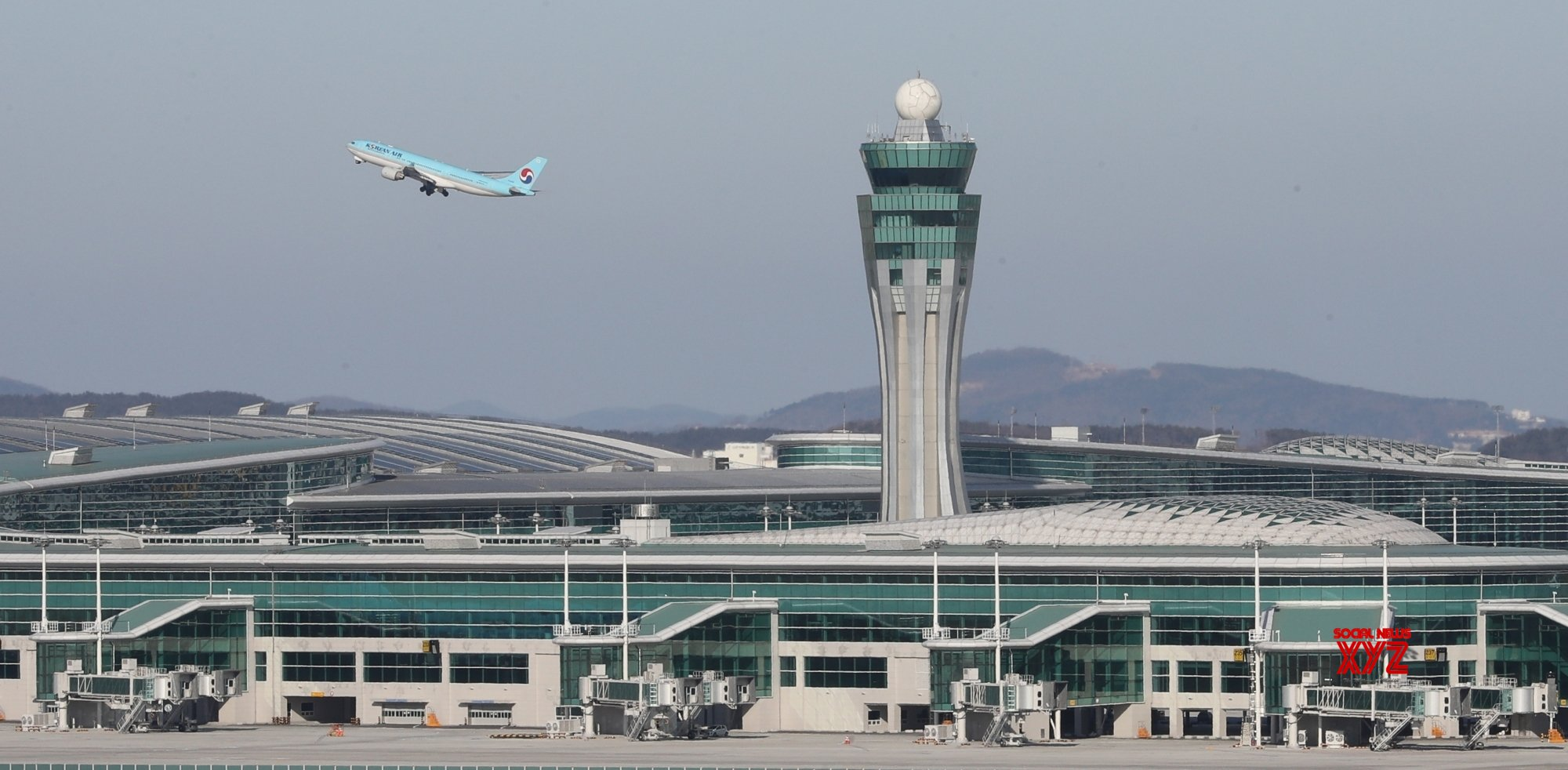 172 S.Koreans arrive from India via special flight