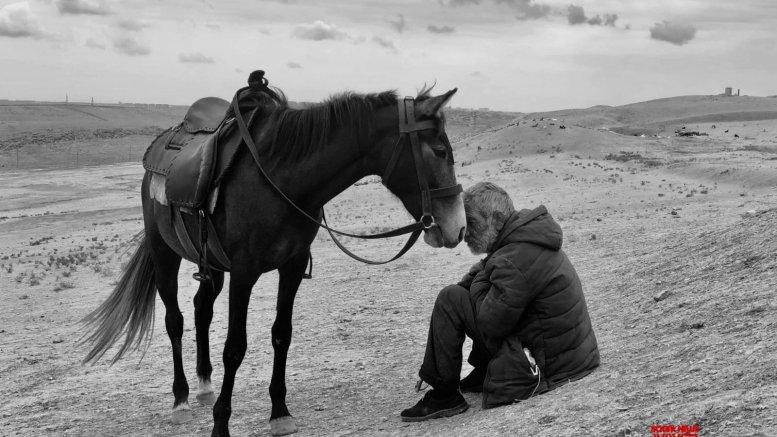 Indian amateur photographer wins big at prestigious iPhone awards