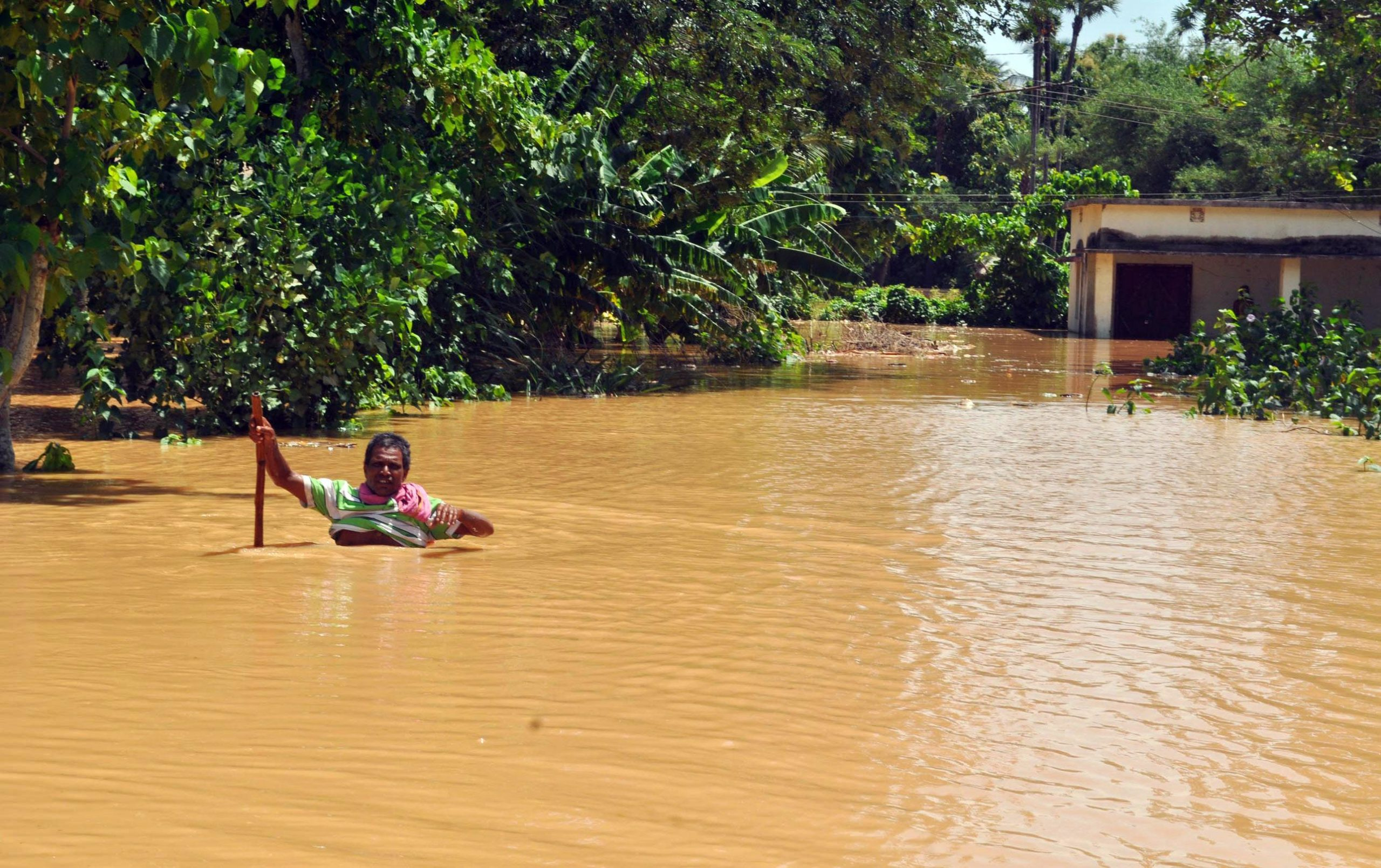 Four killed, one missing due to heavy rain in Odisha