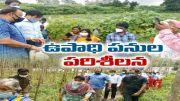 Centre Team Visits Vizianagaram Dst. to Check NREGA Works  (Video)