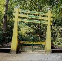 Haryana to conduct mushroom survey in Kalesar sanctuary