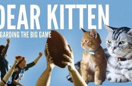 Dear-Kitten-Regarding-The-Big-Game
