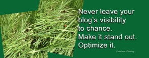 seo-how-to-blog