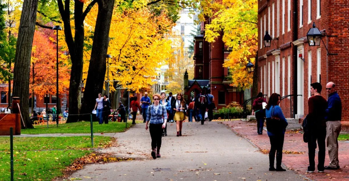 Four Tips for Dealing With Mental Health Needs in College