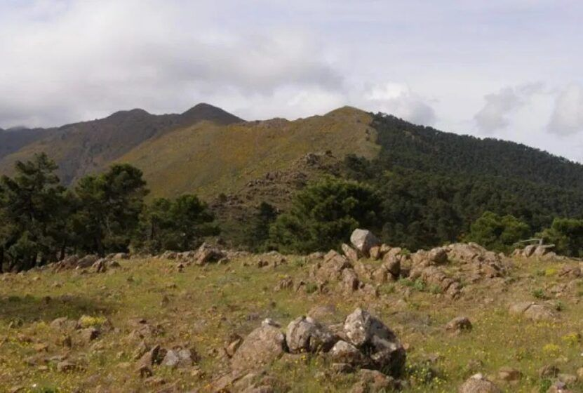 Cresteo Integral Sierra de Palmitera