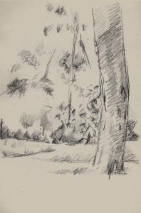 C0890 Arbres et arbustes 83-87