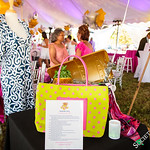 Ellen Hermanson Foundation's Starry Night 2016