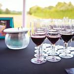 Chocolate & Wine Pairing