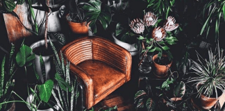 Living in the city with limited space doesn't mean you should have to miss out on having plants growing in your place. Here's some space saving solutions!