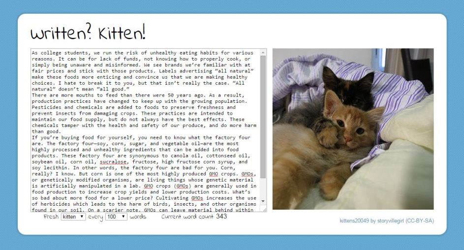 Written? Kitten!